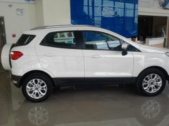 Xe Ford Ecosport cũ 2016